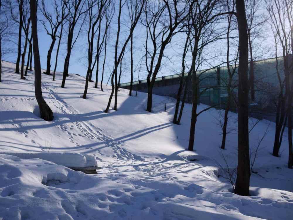 KUMU uphill